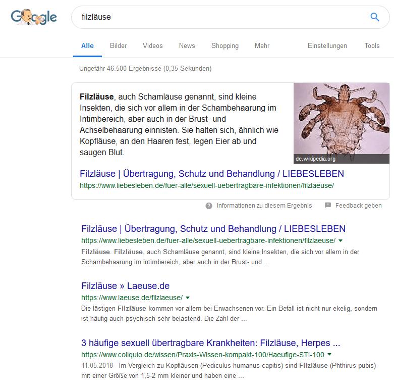 Screenshot Google Suche, 13.05.2019