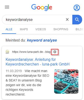 AMP in den Suchergebnissen