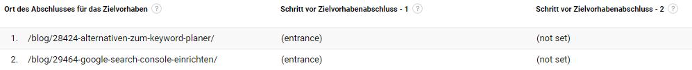 (not set) im Bericht Zielpfad umkehren